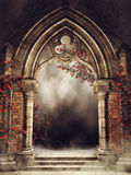 Vintage arch with rose vines. Old vintage arch with colorful rose vines and fog royalty free illustration