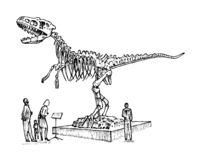 Vintage Archaeological Museum. Visitors are looking at the exhibit. Ancient historical skeleton of an extinct animal stock illustration