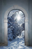 Vintage arched door with view to wintry forest Stock Images