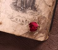 Vintage Armenian book with a rose royalty free stock photography