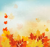 Vintage autumn background with colorful leaves. Stock Photos