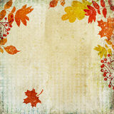 Vintage autumn background Stock Photography