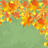 Vintage autumn background, leaf fall. Vintage autumn background with yellow and red leaves. Nature background, leaf fall. Place for text.Vector illustration royalty free illustration