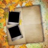 Vintage autumn background Stock Images