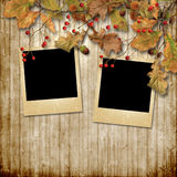 Vintage autumn background with rowan and photo-frame Stock Images