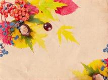 Vintage autumn background Stock Photography