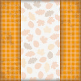 Vintage Autumn Checked Cloth Foliage Stock Photography