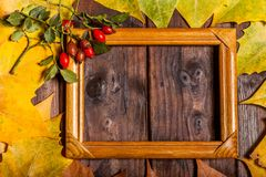 Autumn Leaves and picture frame over old wooden background. Vintage autumn fallen leaves and picture frame on the old wooden table Royalty Free Stock Images