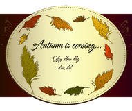 Vintage autumn label with cane. Royalty Free Stock Photos