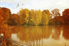 Vintage Autumn Royalty Free Stock Photo