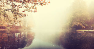 Vintage Autumn Landscape with Fog over Lake. Bright trees reflection in water, film filter stock photos