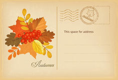 Vintage autumn postcard. With leaves and red berriers in retro style. Vector illustration royalty free illustration