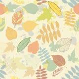 Vintage autumn seamless pattern vector Stock Photography