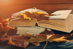 Vintage autumn still life - old worn open books on the table near dry maple leaves royalty free stock images