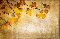 Vintage autumnal background Royalty Free Stock Images