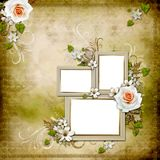 Vintage background with 3 frames and roses Stock Photos