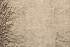 Vintage background. A photo of an old wall with the ivy royalty free stock photography