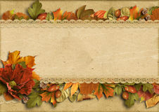 Vintage background with beautiful border autumn decorations Royalty Free Stock Photos