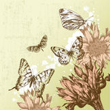 Vintage background with beautiful butterflies and Stock Photo