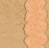 Vintage background. Beautiful rose in the corner o Stock Photo