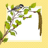 Vintage background with birch branches and tit Stock Photo