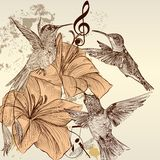 Vintage  background with birds and flowers Royalty Free Stock Images