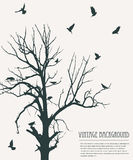 Vintage background birds. Vintage background with flying birds and tree Stock Photography