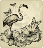 Vintage background with blooming roses, bird flami. Ngos and butterflies. Vector illustration Royalty Free Stock Image