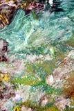 Soft vintage colors, paint background, hues, watercolor paint background. Vintage background in blue gray dark pink green white brown orange white hues, blurred vector illustration