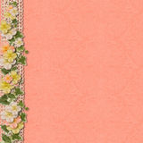 Vintage background with a border of flowers. Vintage background with flowers. greeting card. Home for the family album with place for photo and text stock image