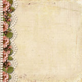Vintage background with border of flowers and lace Royalty Free Stock Photography