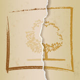 Vintage background cardboard/paper texture Royalty Free Stock Photo