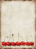 Vintage background with cherry Royalty Free Stock Image