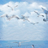 Vintage background with clouds and seagull Royalty Free Stock Images