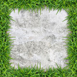 Vintage background of concrete texture and green grass. Stock Photography