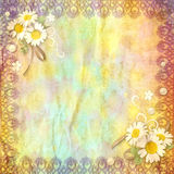 Vintage background crumpled paper. With a border of lace and chamomile flowers Royalty Free Stock Photo