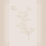 Vintage background decorative flower delicate color Royalty Free Stock Images