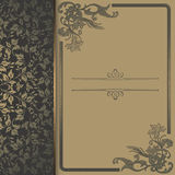 Vintage background with decorative patterns and frame. Royalty Free Stock Photos