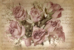 Vintage background with dried roses Stock Images