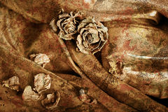 Vintage background: Dry rose on satin. Gold colored image, shall Stock Image