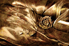 Vintage background: Dry rose on satin. Gold colored image, shall Stock Photos