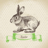 Vintage background with Easter rabbit Stock Photography