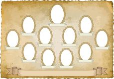 Vignette. Vintage background with eleven frames for pictures - transparent space insert Royalty Free Stock Image