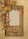 Vintage background with faded autumn leaves and ashberry Royalty Free Stock Image
