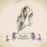 Vintage background with feather Stock Image