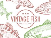 Vintage background with fish vector. Isolated Stock Photos