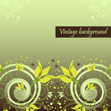 Vintage background with floral elements Stock Photos