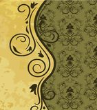 Vintage background with floral pattern Stock Images