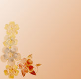 Vintage background with flower brooches Stock Image