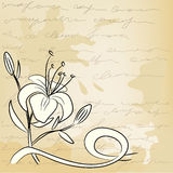 Vintage background with flower sketch Royalty Free Stock Photos